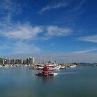 Townsville Breakwater Marina by Paul Gilbert