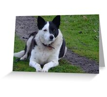 Max Greeting Card