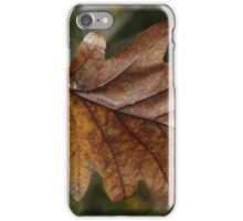 Autumnal Rust iPhone Case/Skin