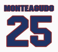 National baseball player Rene Monteagudo jersey 25 by imsport