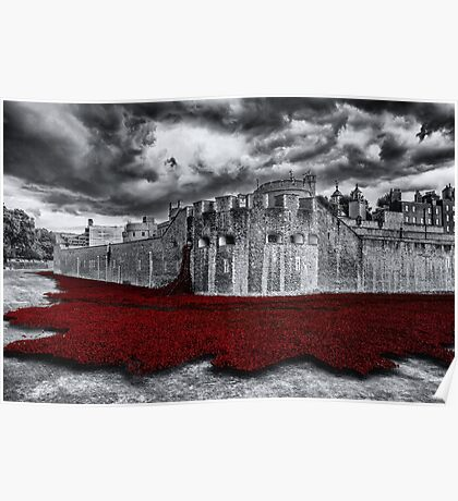 Tower Poppies Poster