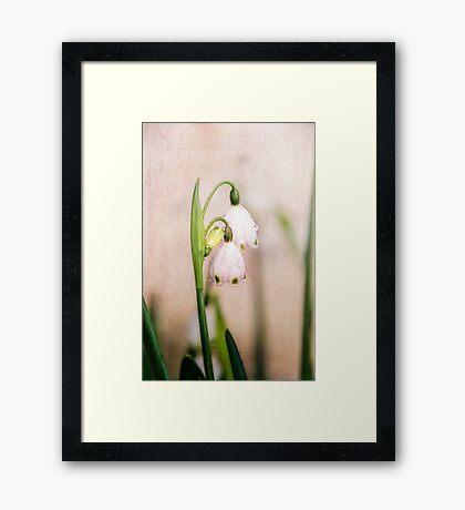 Spring Duet Framed Print
