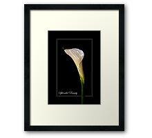 SPLENDID BEAUTY Framed Print
