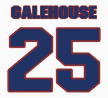 National baseball player Denny Galehouse jersey 25 by imsport