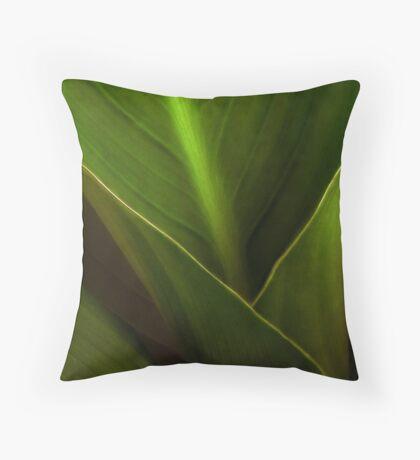 FUNNEL OF LIGHT Throw Pillow