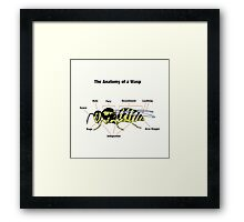 The Anatomy of a Wasp Framed Print