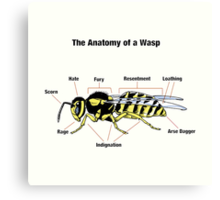 The Anatomy of a Wasp Canvas Print