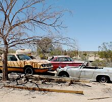 Joshua Tree Car Graveyard by Anne McGrath