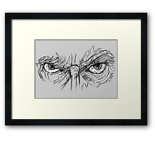 Doctor Who - Peter Capaldi Eyes - No Sir, All 13 Framed Print