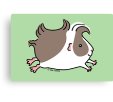 Leaping Guinea-pig ... Grey and White Canvas Print