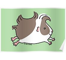 Leaping Guinea-pig ... Grey and White Poster
