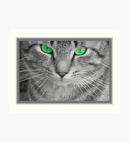 Envious Eyes Art Print