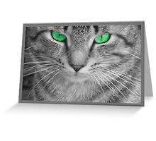 Envious Eyes Greeting Card
