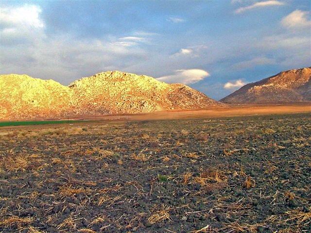 Golden Hills by raptrlvr