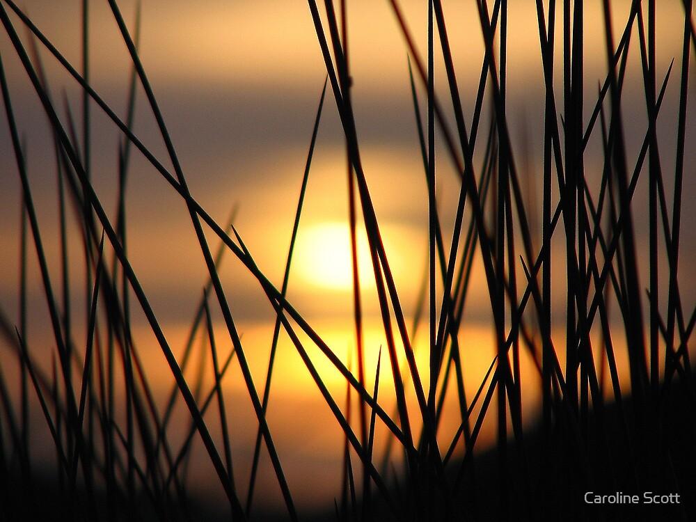 Mandurah at Sunrise by Caroline Scott
