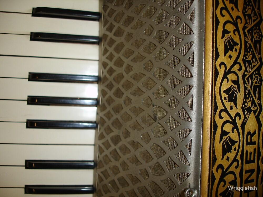piano accordion by Wrigglefish