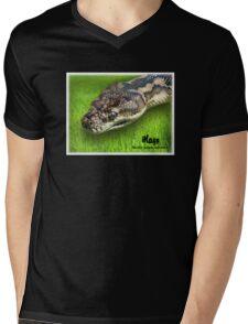Morelia Spilota Imbricata Mens V-Neck T-Shirt
