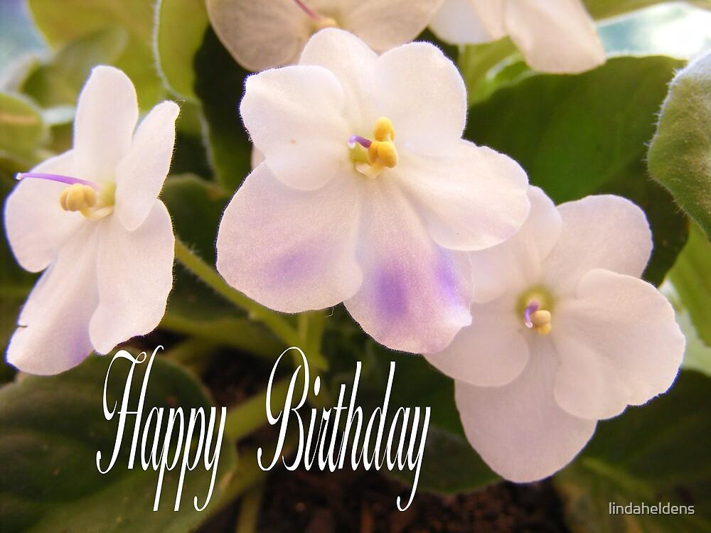 violet birthday card by lindaheldens