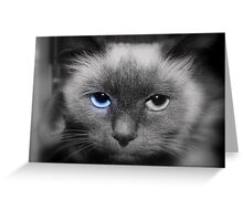 Blu Eye :) Greeting Card