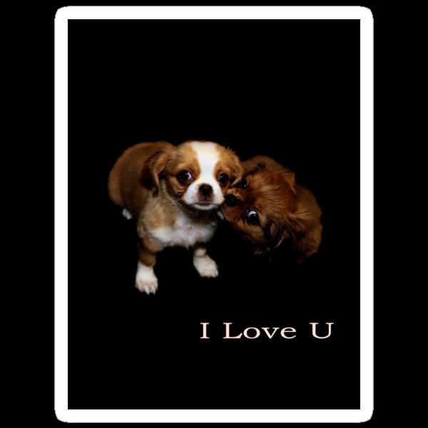 I Love U by Catalin Soare