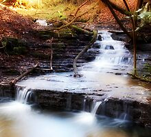 Lumb Brook by Thelonius