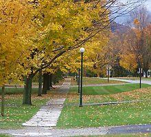 Golden Autumn by kalliope94041