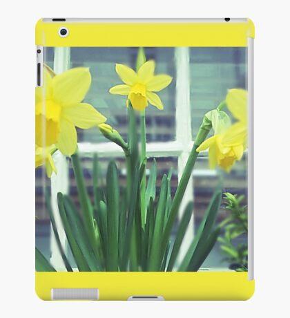 St Ives Daffodils  iPad Case/Skin