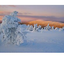 Lapland Mornings Photographic Print