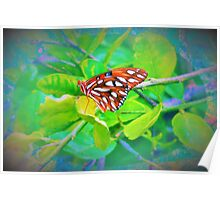 Butterfly bling Poster