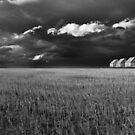 Endless Sky by John Poon