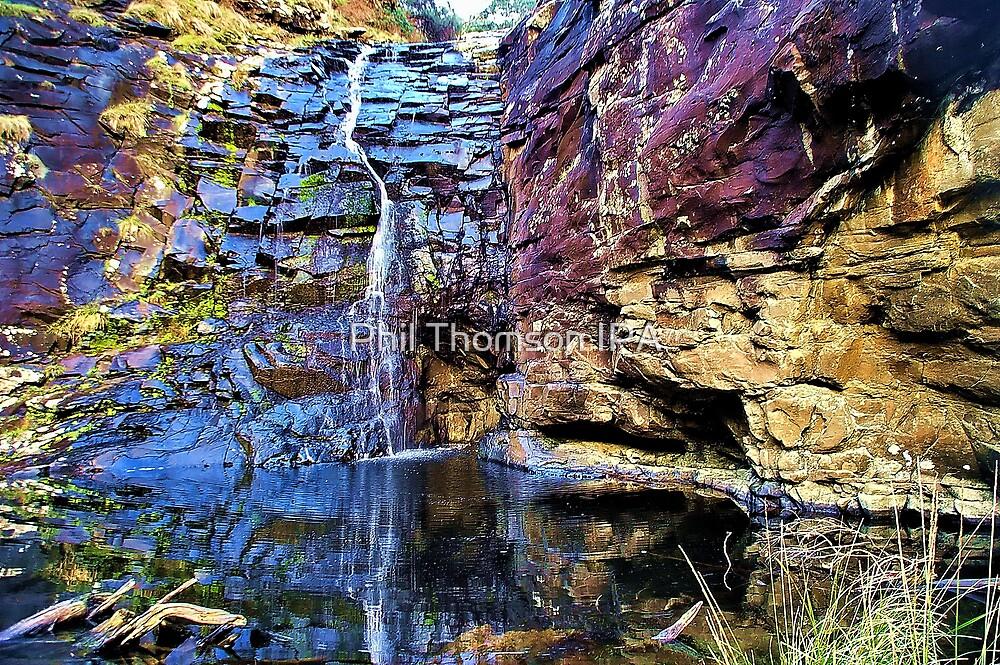 Sheoak Falls by Phil Thomson IPA