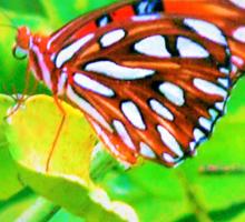 Butterfly bling Sticker