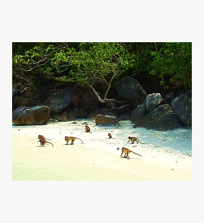 Monkey Beach Photographic Print