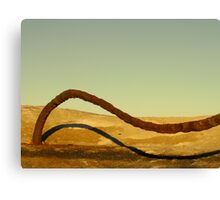 Dune Surfer Canvas Print