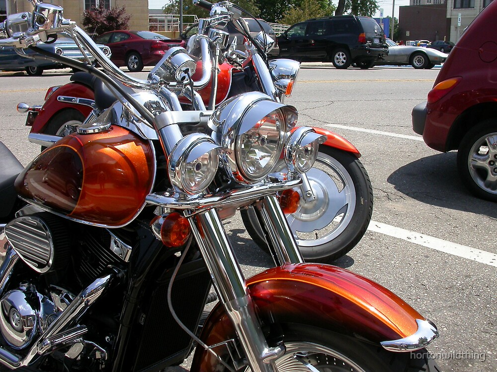 close up of bikes hogs, by hortonwildthing