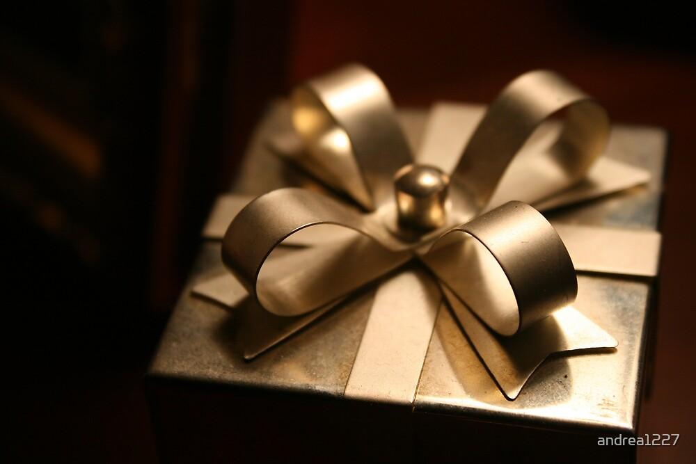 Shiny Gift by andrea1227
