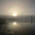 Misty shoreline by Claire Armistead