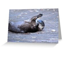 River Otter ( Lontra,canadensis) Greeting Card