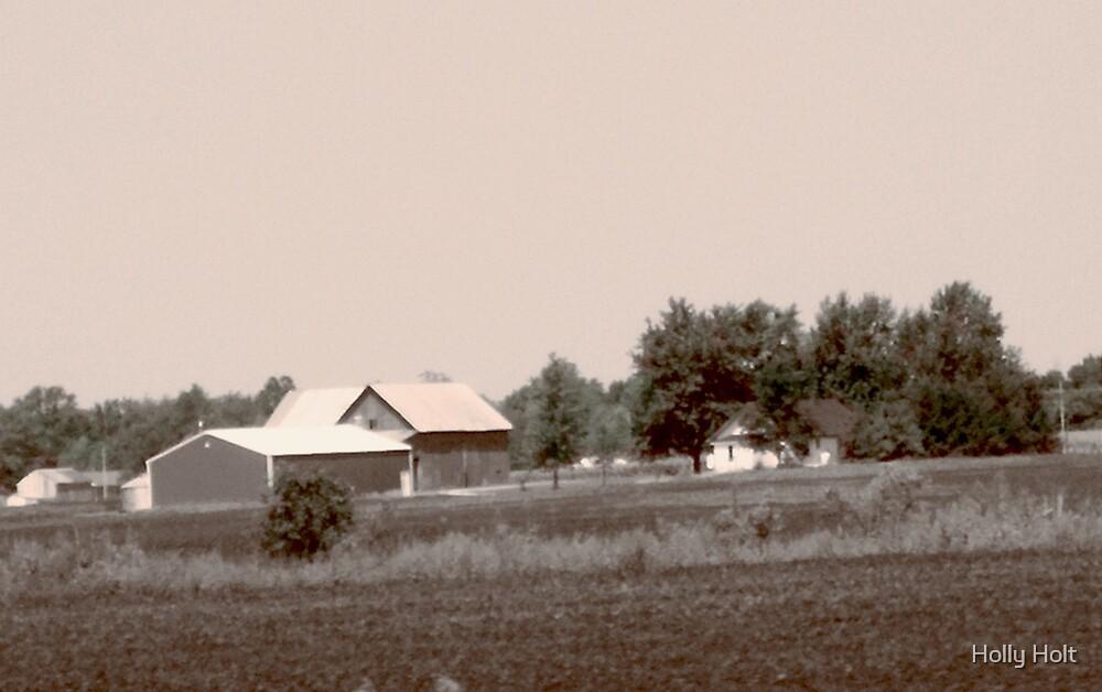 The Farm by Holly Holt