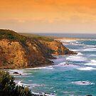 Cape Otway by Steven  Agius