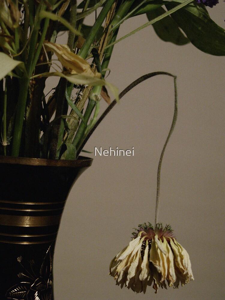 Flower by Nehinei