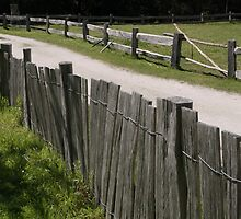 Fence by Nehinei