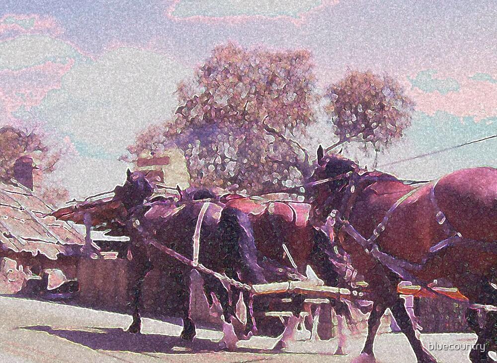 Horse drawn by bluecountry