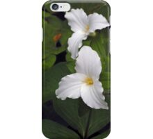 Two White Trilliums iPhone Case/Skin