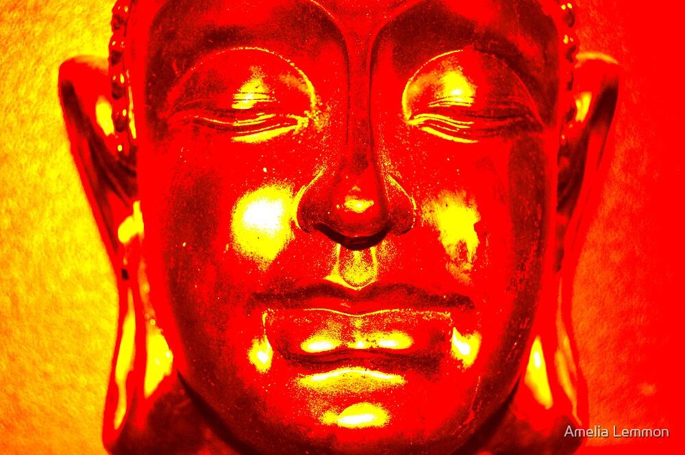Solar Buddah by Amelia Lemmon