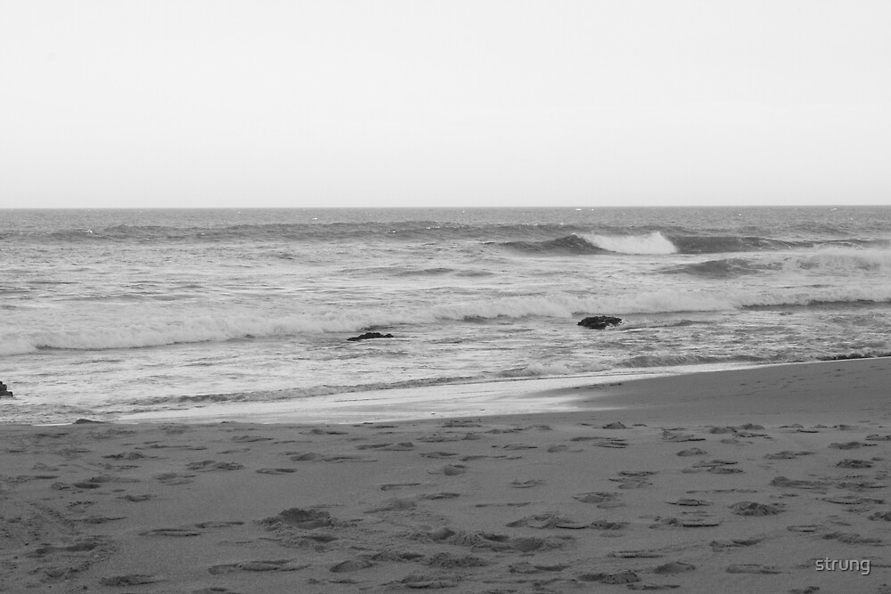 surf B&W by strung