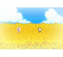 Sunflower Fields - Mother 3 Photographic Print