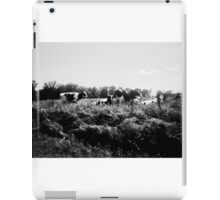 Wisconsin Cows iPad Case/Skin