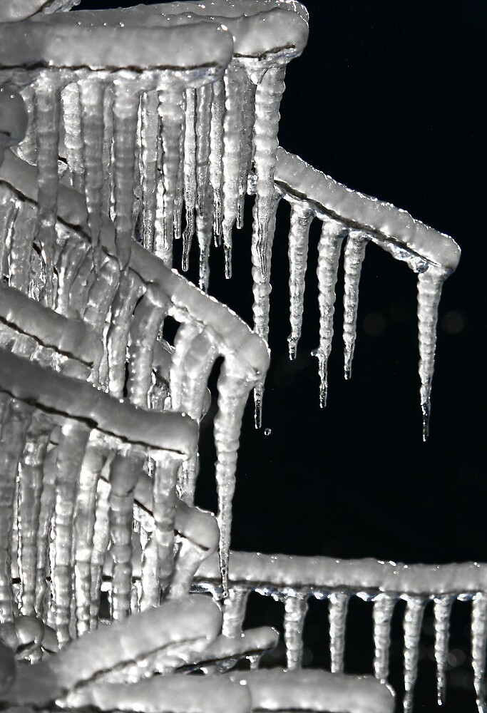 ICICLES by CRSPHOTO