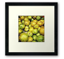 Green Tomatoes Photo Framed Print